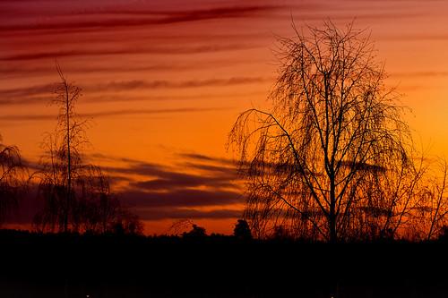 sunrise espoo finland artistoftheyearlevel2