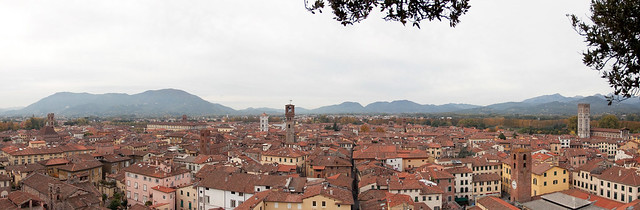 Panorama of the city of Lucca