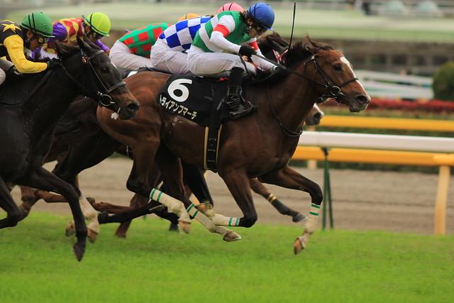 10R勝ち馬 トライアンフマーチ(川田将雅)3