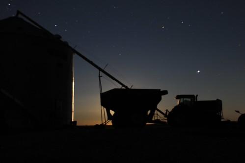 A Moonlit Harvest