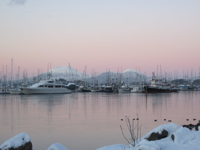 Sitka, AK Harbor 8 am November 18, 2011