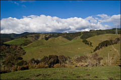 Landscape in the Hunua Ranges