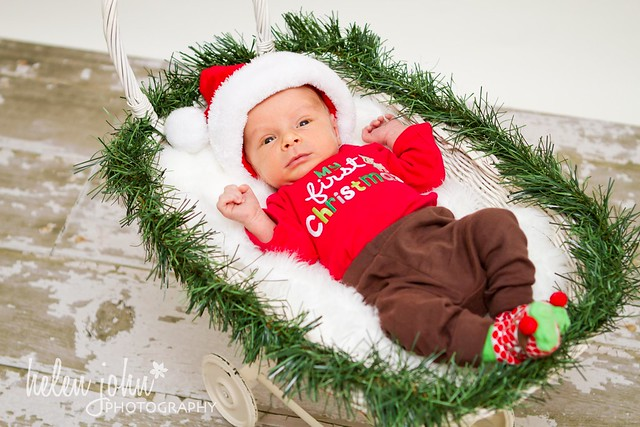 rockville maryland newborn photographer-1