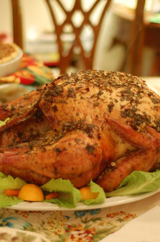 thanksgiving has begun