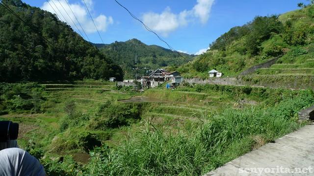 Batad-Ifugao18