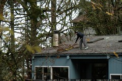 rachel pushing leaves over the edge of the roof    M…