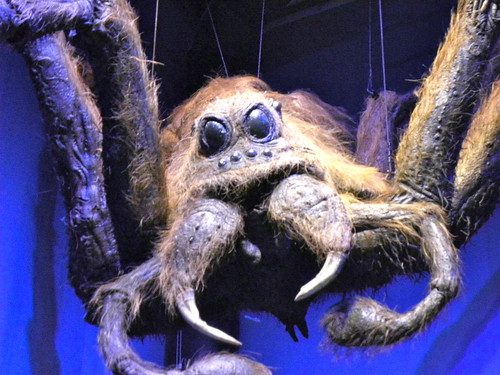 Harry Potter studio tour: Aragog