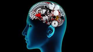 memoria_en_cerebro