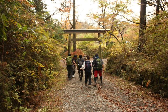 20111112_金時山_0059