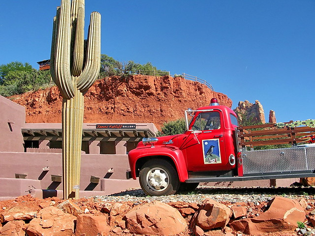 Rustle a Cactus, Meet The Cactus Cops - California Bail