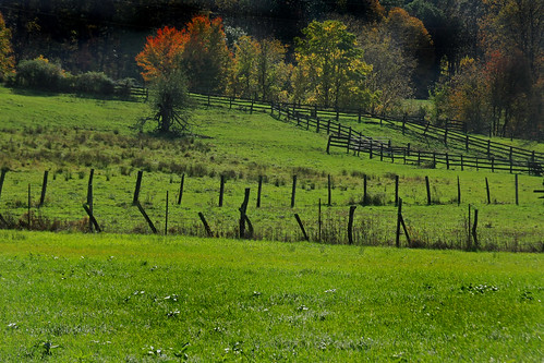 autumn fall fence scenery farm foliage pasture land