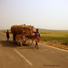 on the way to Charchika Temple by kamalakant Nayak