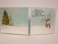 CD gift card holder front/back
