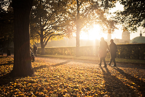 park sunset münchen bayern sonnenuntergang herbst gegenlicht hofgarten wärme