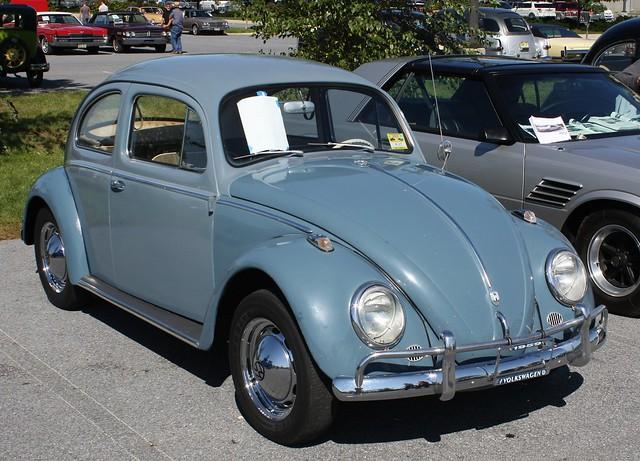 volkswagen beetle flickr photo sharing