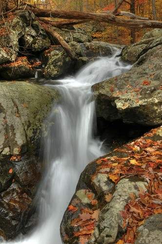 autumn fall leaves virginia waterfall nationalpark nikon outdoor hiking hdr circularpolarizer d300 18200mm photomatix nottrash