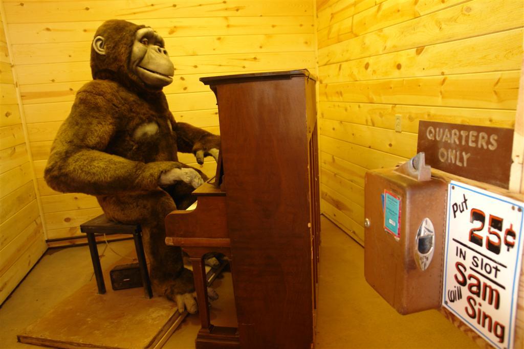 Una de las joyas del Back Yard, Gorila tocando el piano por unos centavos wall drug store, pare aquí para su agua con hielo gratis! - 6318092382 386d97df83 o - Wall Drug Store, pare aquí para su agua con hielo gratis!