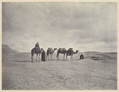 Egyptian Desert, by Adolphe Braun