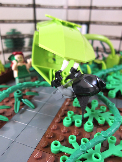 Batman vs. Poison Ivy 5