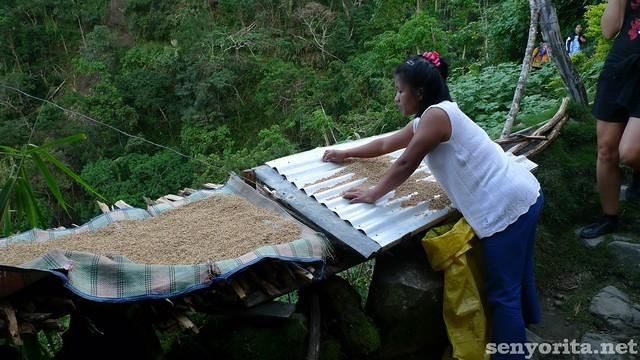 A female local working