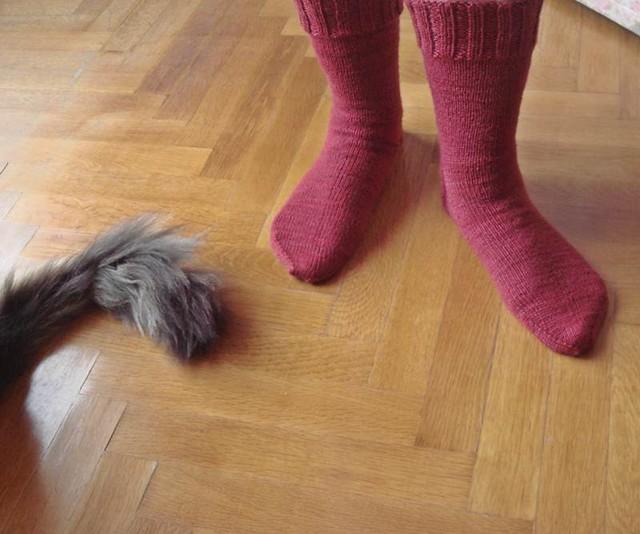 cranberry socks