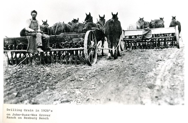 Farm Drilling
