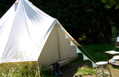 tent, camping,