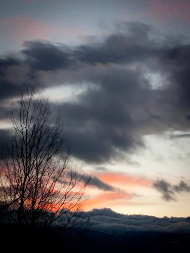 winter sunset tree clouds rockies colorado rockymountains