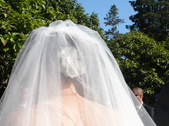 gown(0.0), mosquito net(0.0), quinceaã±era(0.0), dress(0.0), bride(1.0), veil(1.0), bridal clothing(1.0), bridal veil(1.0), wedding dress(1.0),