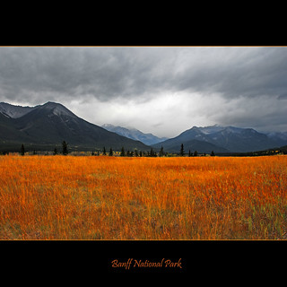 Banff National Park #1211
