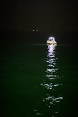 Night Fishing #1