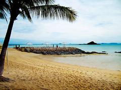 Package 3 : Transfer,coral Island,nongnooch,alcazar,city Tour,safari Tour