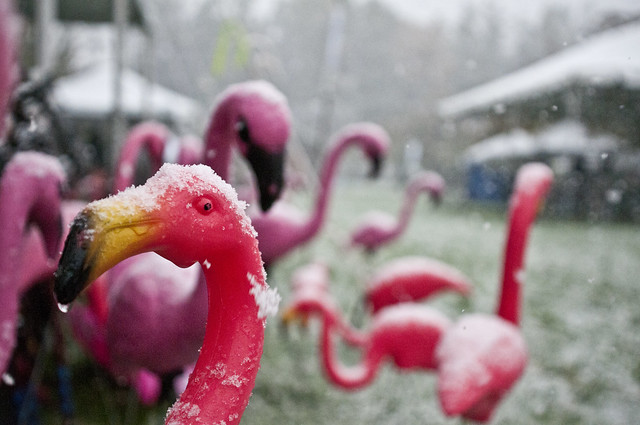 Snow falls on the Flamingo Croquet course during Ghouls & Gourds 2011. Photo by Mike Ratliff.