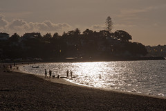 St Heliers Bay Beach