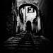 20111104_Tmax400_HM_005 by p1r0 (Ludovico Poggioli)