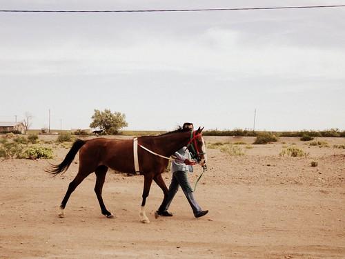 las vías, un vecino y su caballo