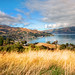 Beautiful Akaroa by Stuck in Customs