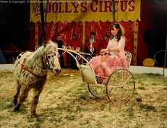 Peter Jollys Circus, UK 2010