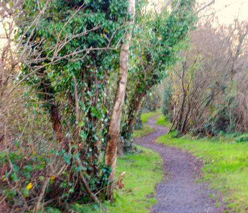 Railway Walk Tinahely
