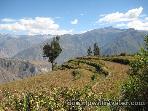 hiking colca canyon peru 05