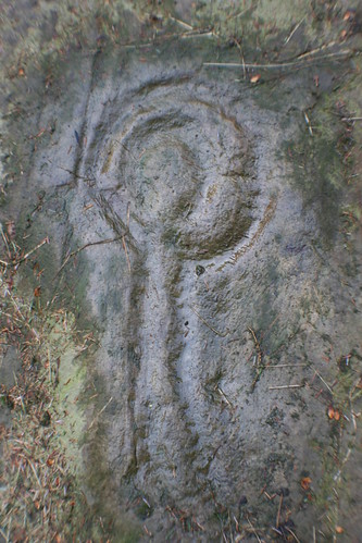 Prehistoric Rock Art, Stronach Wood
