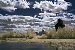 Ukrainian Village - Grain Elevator and Lake