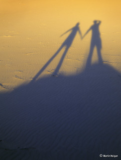 Kalahari Shadows