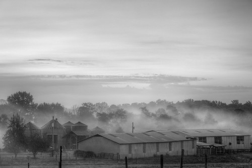 the farm shrouded in the morning fog (Explore 10/10/2011 #428) (B&W) (HDR)