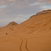 Desert Safari - Dune Bashing Tracks
