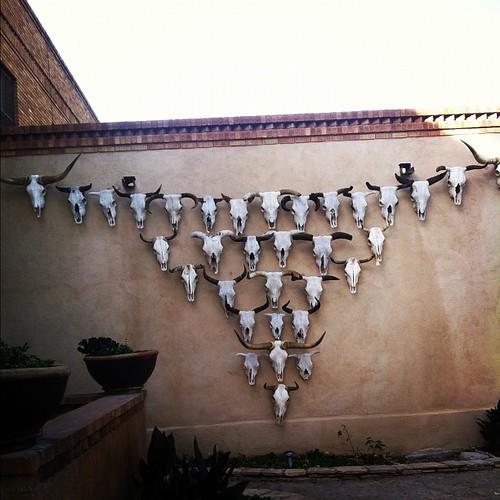 Skull made of skulls