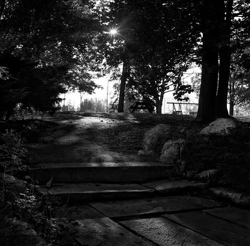 Into the light by Alan Norsworthy