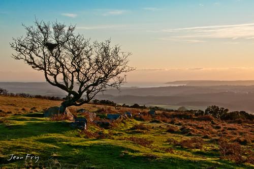 uk sunset devon dartmoor hawthorn westcountry plymouthsound shaughmoor