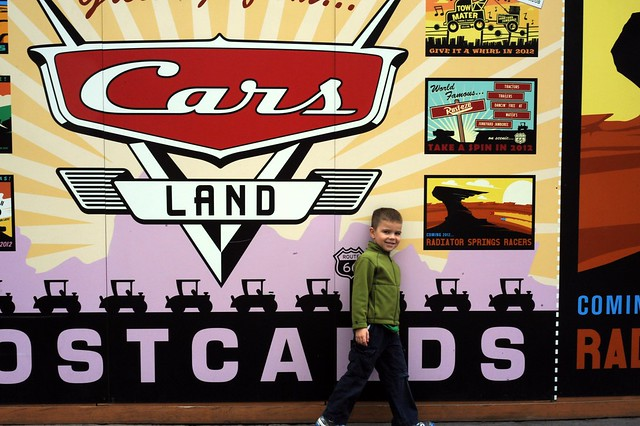 Cars Land Coming Soon...