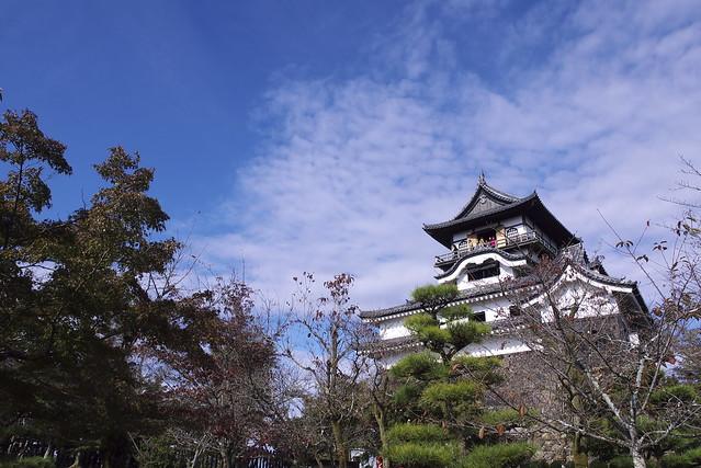 Morning Castle